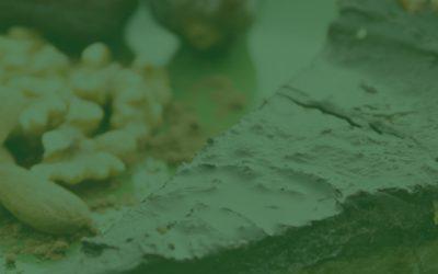 Crudi y frutiveganos: la filosofía del consumo de alimentos crudos